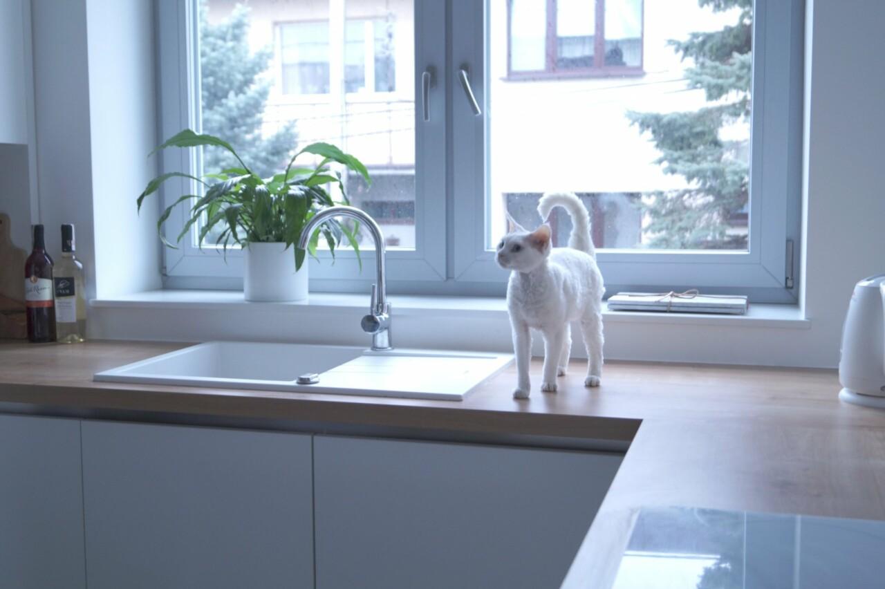 Kuchnia WFM Calma biały mat m101 blat dąb arlington - Kuchnie na wymiar Kraków, meble kuchenne Kraków | WFM Kuchnie Kraków